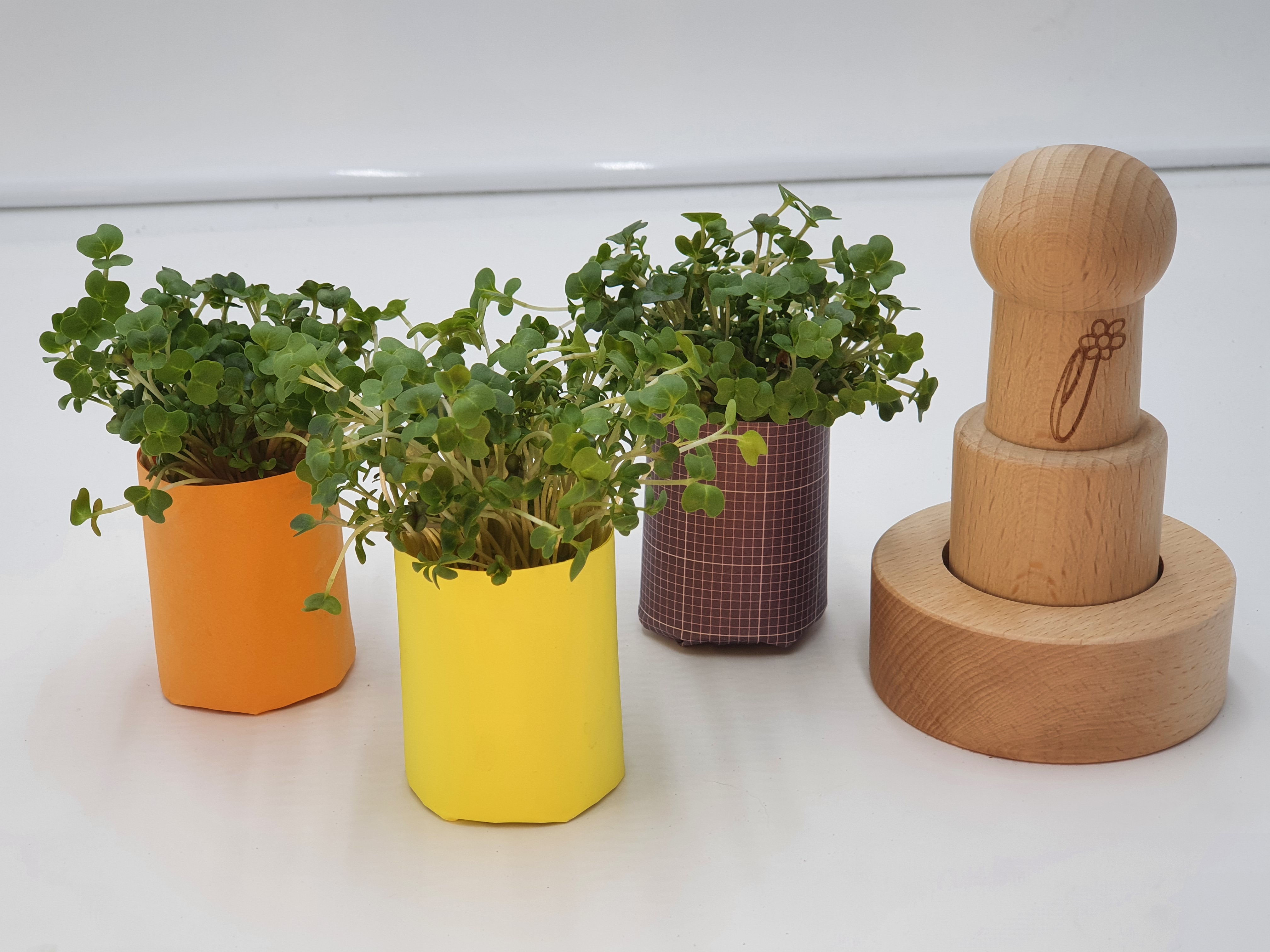 e-pots paper pot maker with cress in seed pots