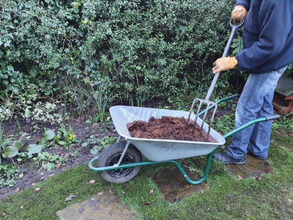 man with coir in wheelbarrow